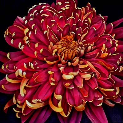 Silk Painting Chrysanthemum Christmas Wine