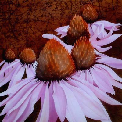 Silk Painting Coneflowers