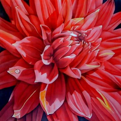 Silk Painting Red Dahlia