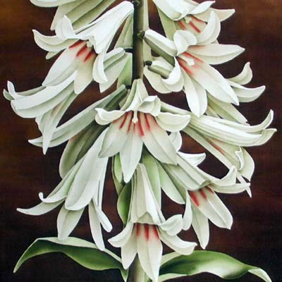 Silk Painting Giant Himalayan Lily