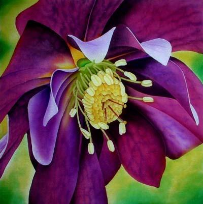 Silk Painting Hellebore