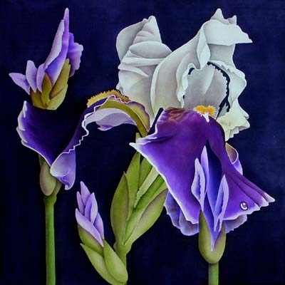 Silk Painting Bearded Irises