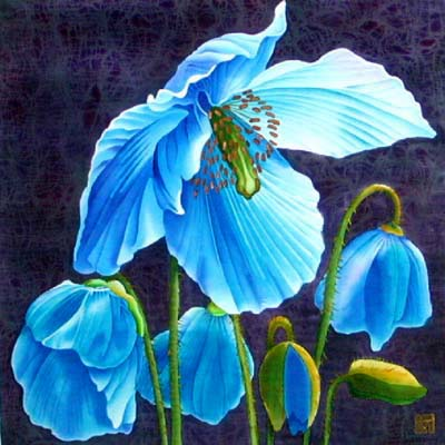 Silk Painting Meconopsis