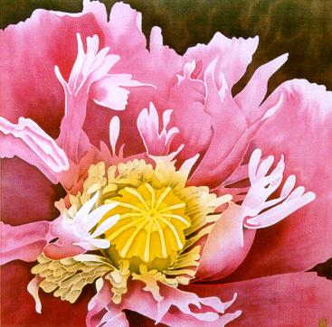 Silk Painting Opium Poppy