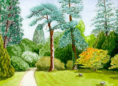 Watercolour Westonbirt Arboretum Gloucestershire