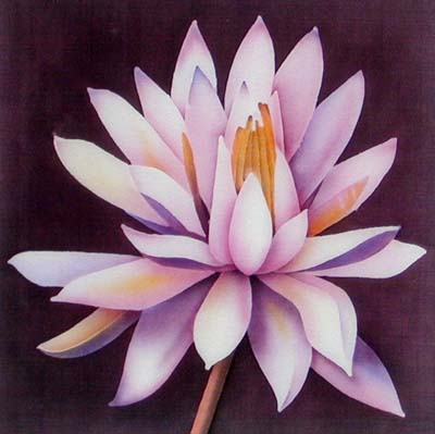 Silk Painting Pink Water Lily
